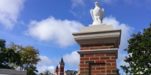 eagle with Samford tower