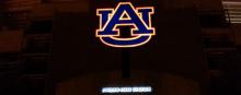 jordan-hare au logo midnight