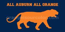 all auburn all orange harbie